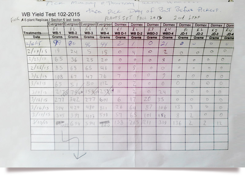 Yield test pg1